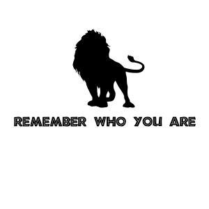 Lion King Remember Who You Are Vinyl Decal on Luulla